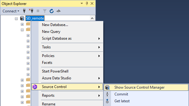 Source Control Manager Shortcut
